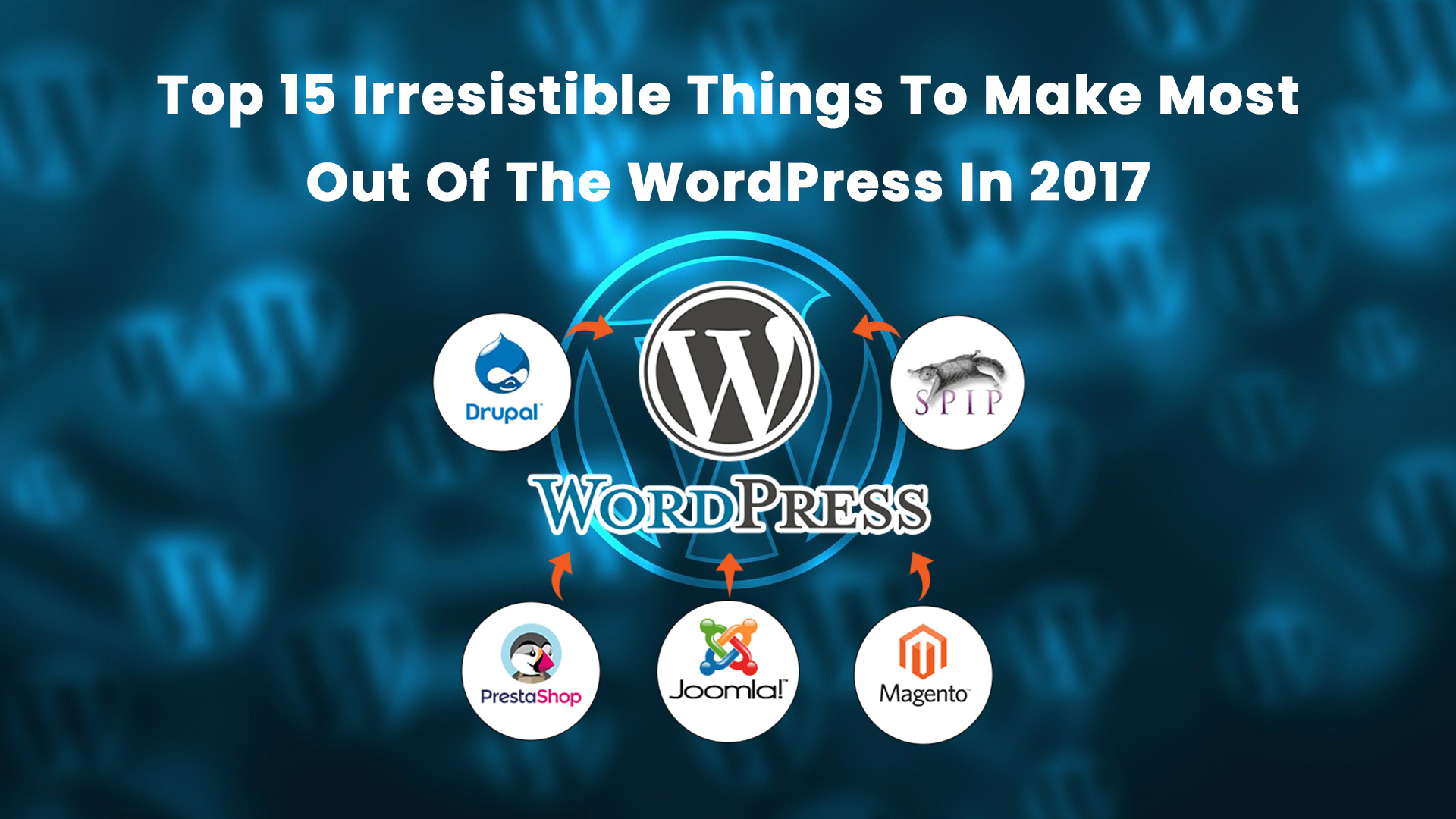 Top 15 Irresistible Things To Make Most Out Of The WordPress In 2017