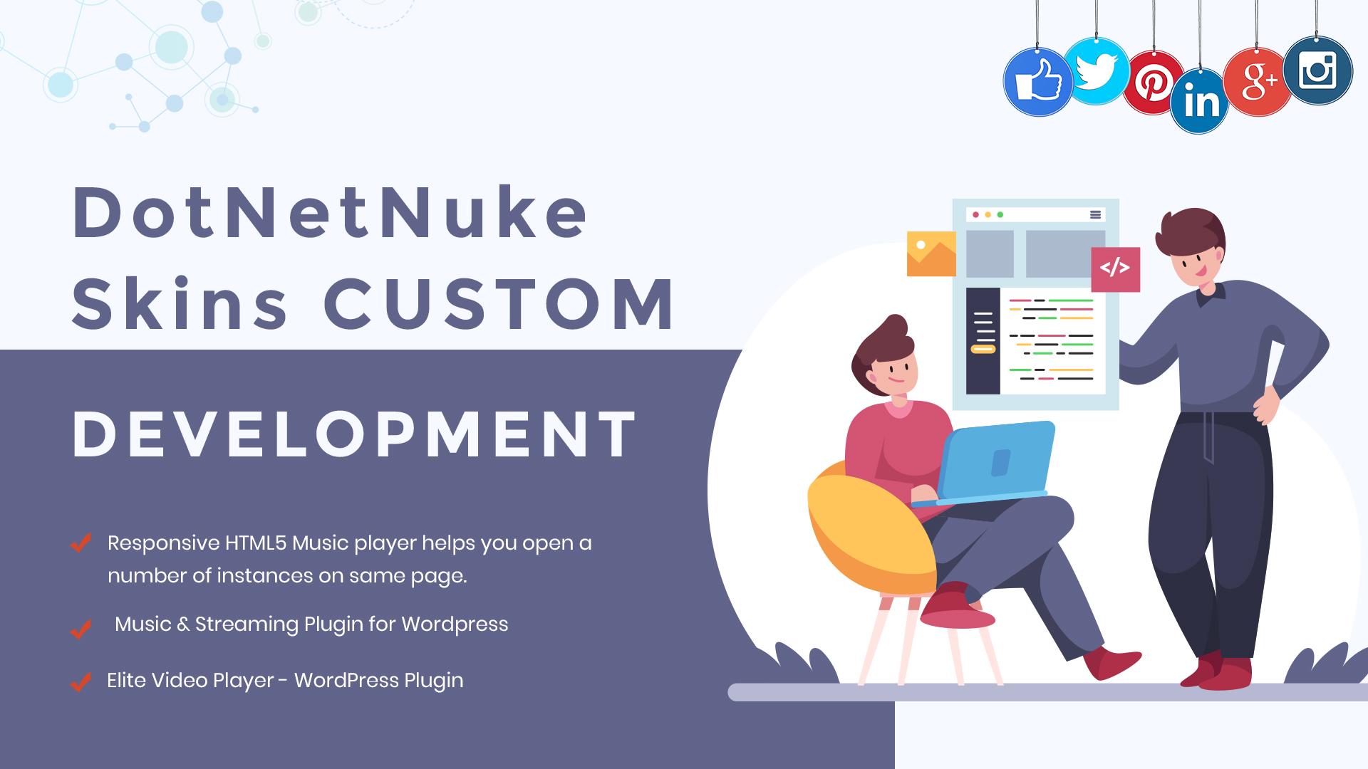 Why Go For DotNetNuke Skins Custom Development